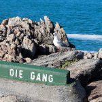 De Gang